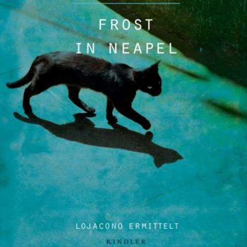 Maurizio de Giovanni: Frost in Neapel